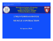 ch7_muscle_contr