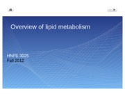 4 Overview Lipid Metabolism