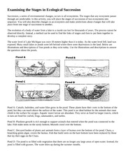 Ecological Succession POND Worksheet - Ecological Succession ...