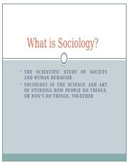201_SOC the sociological perspective