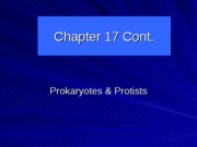 Chapter 17 Cont prokary & protists
