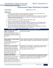 NR351 Professional Paper Worksheet Template