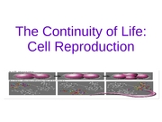 Cell Reproduction, Chapter 11, 2007