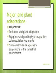 Adaptation_trendsFerns_-_a_successful_group_of_plants