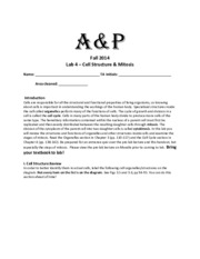 Lab 4 Worksheet