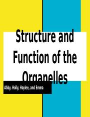 Structure and Function of the Organelles.pptx