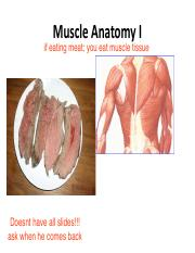 6.2%20Muscle%20Anatomy%20STudent%20Part%201.pdf