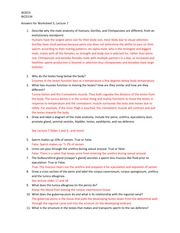in the womb video questions answers