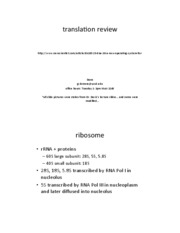 Translation Review