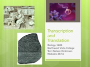 Nature-Transcription and Translation (48-52) (1).ppt