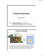 Chapter 4 Protein Purification