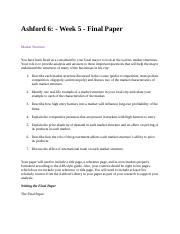 Ashford 6 Week 5  Final Paper.docx