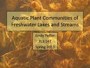 Aquatic+Plants+of+Lakes+and+Streams