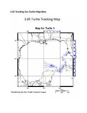 03.05 Sea Turtle Tracking.docx