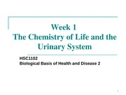 HSC 1102 Week 1 - Tutorial