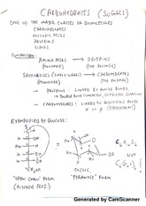 Organic Chemistry II - Carbohydrates Notes