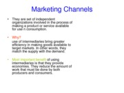 Marketing Channels (Report)