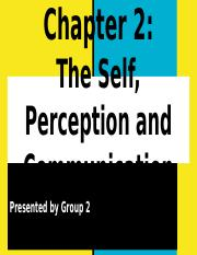 Chapter 2 - The Self, Perception and Communication.pptx
