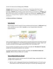 Lecture 4 for Neuroscience Reading Notes.docx