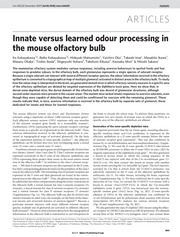 09-23_Innate versus learned odour processing in the mouse olfactory bulb