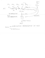 Lecture 17 Overhead Notes