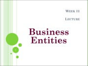 Lecture Business EntitiesBb