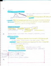 HHP 3723 Notes 3: epidemiology triangle