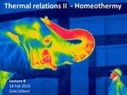 Lec 8 - Thermal relations II Homeothermy
