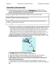 Protist Notes - Plant Like Protists Worksheets