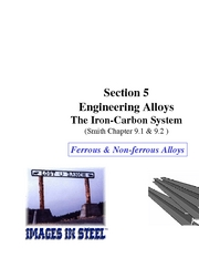 Section 5A Fe/C System