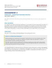 BUS100_Assignment3_Marketing Manager Analysis