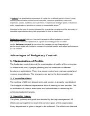 budget and budgetary control.doc
