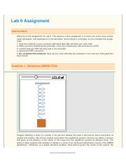 Lab 9 Derivative Application Assignment -2.pdf