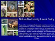 Biodiversity & Nature Preservation