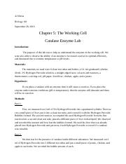 The Working Cell Lab 5