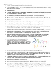 Worksheets Worksheet 3.9 Mitosis Sequencing Answer Key 3 answer key practice questions review mitosis meiosis