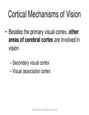 Cortical Mechanisms of Vision.pd.pdf