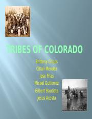Tribes of Colorado brittany