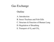 Gas Exchange Figs BW