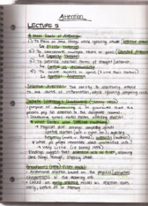 Lecture 5 Attention Notes