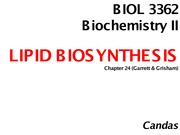 Chp 24 LIPID BIOSYNTHESIS