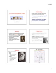 Lecture_7_phylogenetics