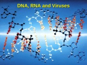 DNA-RNA-Viruses
