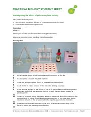 effect of ph on amylase