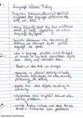 Thinking and Language Notes