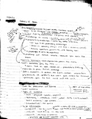 Stages of Trial notes