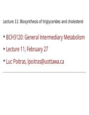 Lecture 11 Biosynthesis of triglycerides and cholesterol B&W