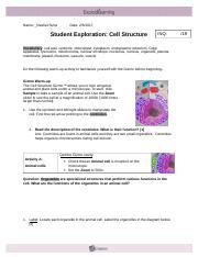Ribosomes Golgi Bodies Centrioles Cytoplasm Nucleus ...