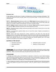 Copy of Action Potential Lab.doc