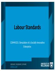 8Labour_Standards_LECTURER_VERSION[1]